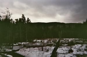 Trail_view